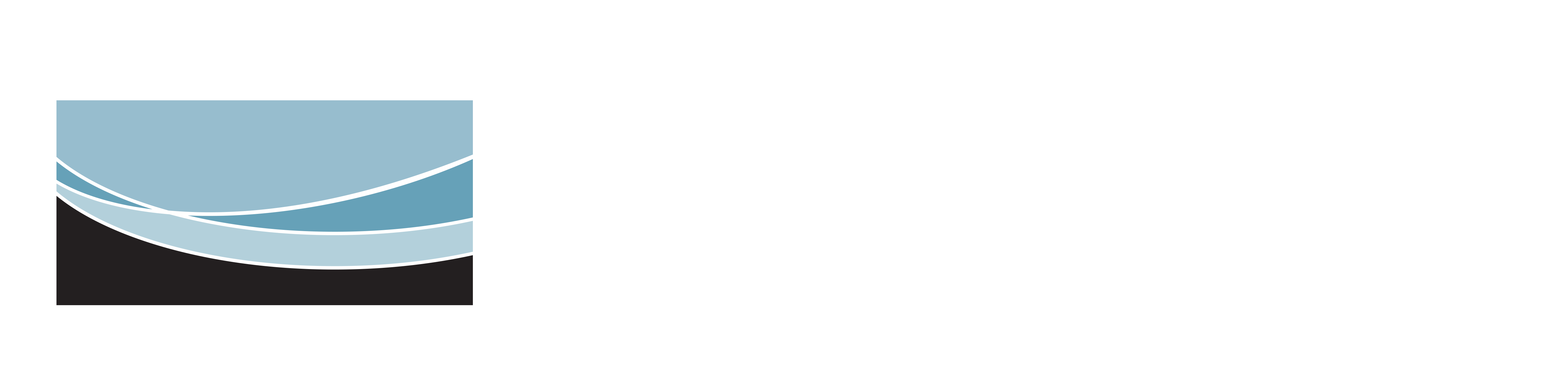 International Lining Technology