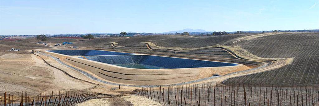 Image of vineyard lining